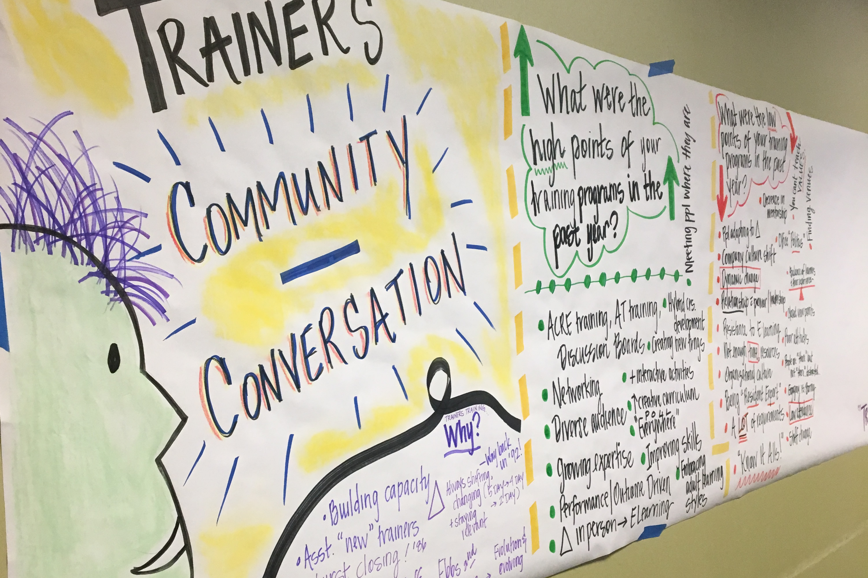 Graphic Facilitation of the Trainers' Community Conversation