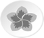 white circle containing a lotus flower