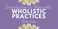Introduction to Networks' Wholistic Practices Services